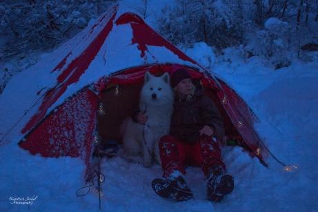 vinternatt-8420